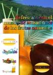 gráfica tropicalidos y logos